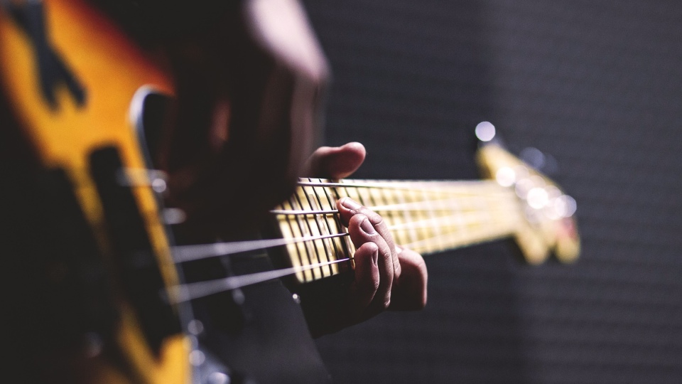 Bass guitar chords in action (Pixabay)